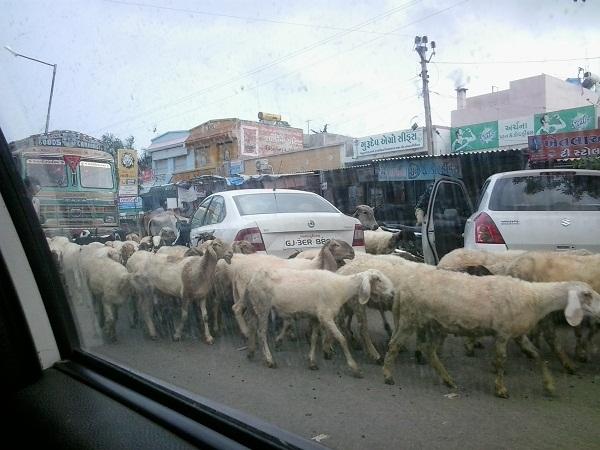 kondisi lalu lintas india 2