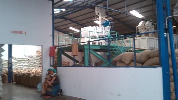 kunjungan ke alamat pabrik kopi di medan (3)